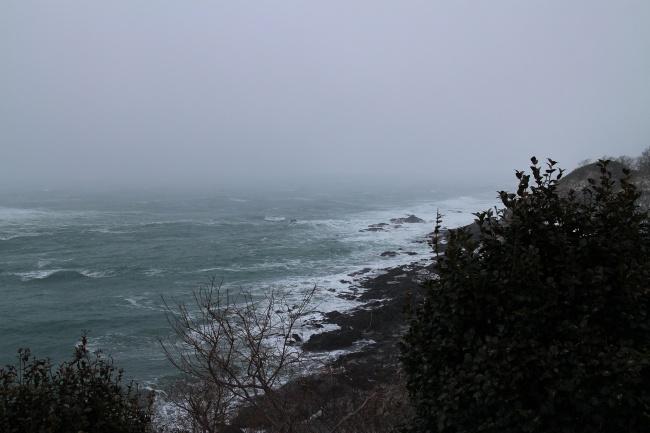 冬の木ノ浦
